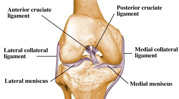 ligament tear