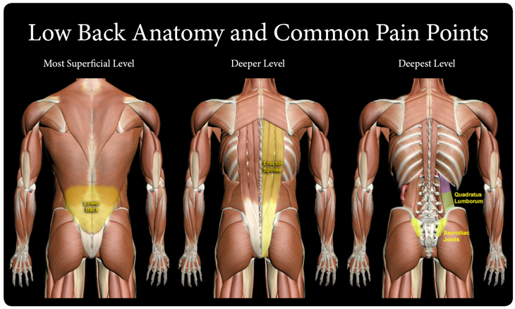 common back injuries